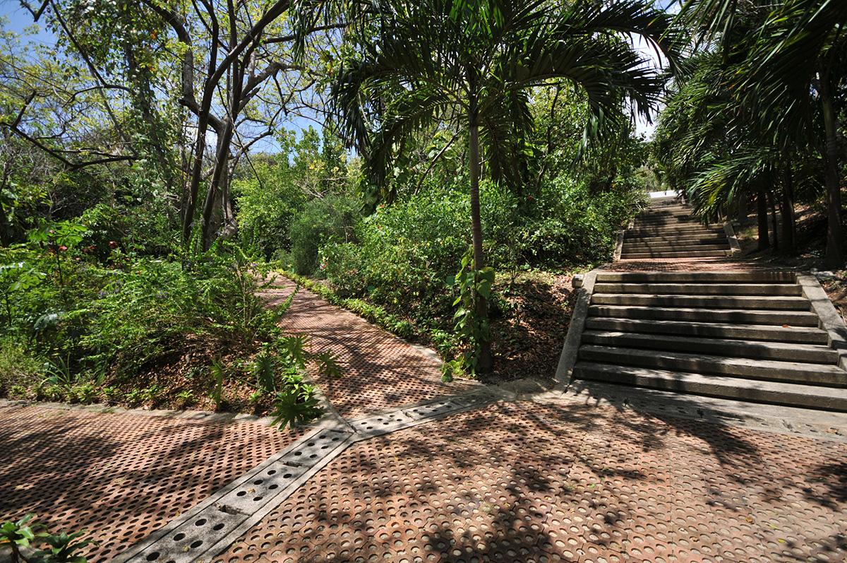 Jard n bot nico acoge semana por la sostenibilidad for Jardin botanico bogota nocturno 2016