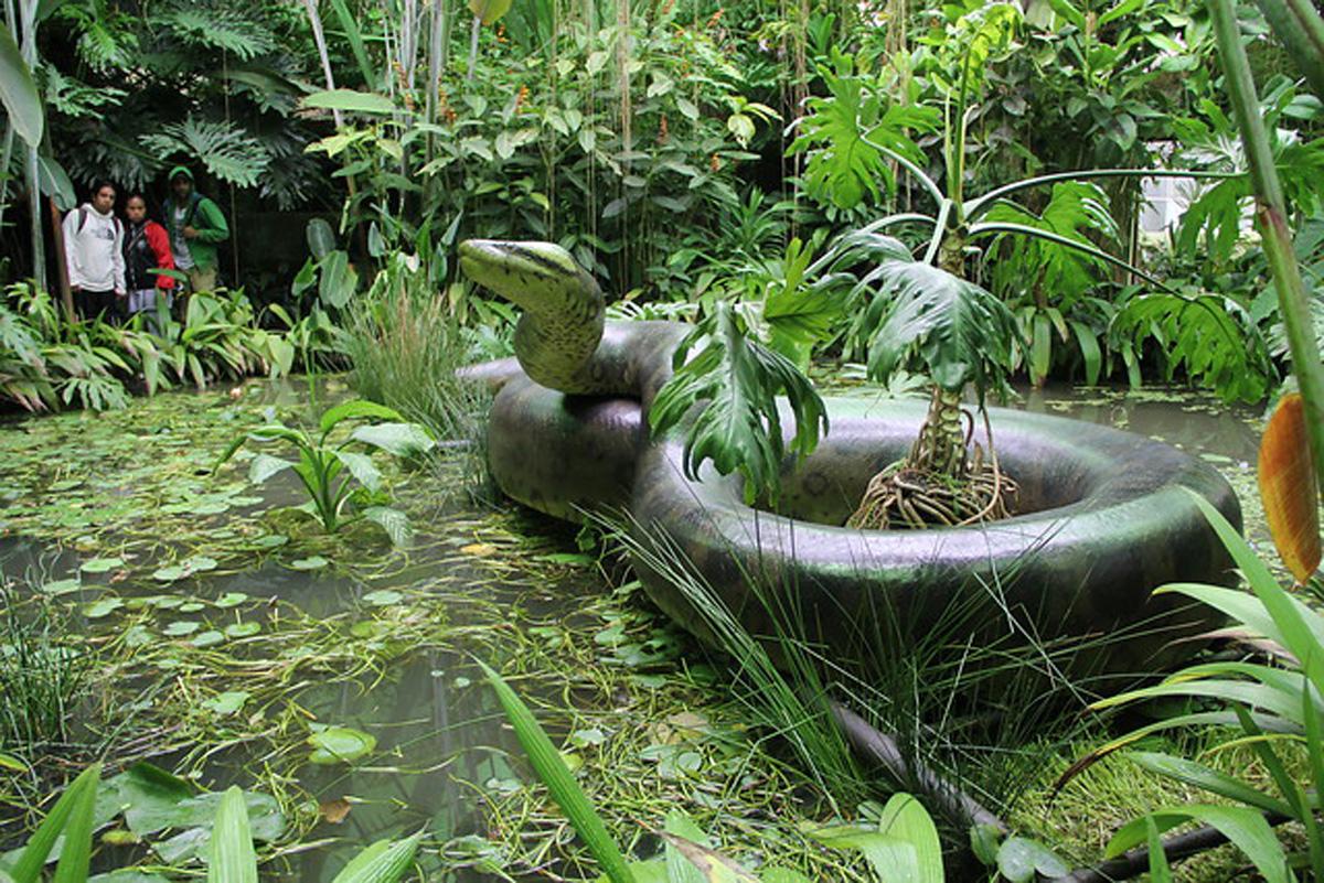 Jardines bot nicos esenciales en la regeneraci n de for Arriendos en ciudad jardin sur bogota